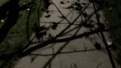 shadows on a sidewalk at night