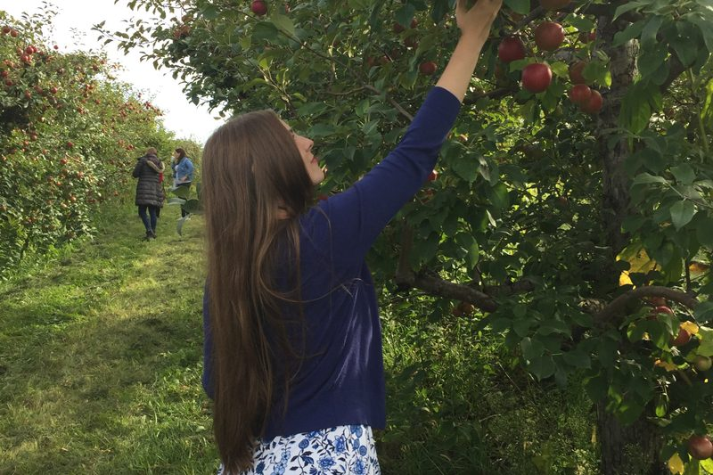 girl picking apples