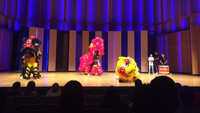 Tay Phuong Lions performance