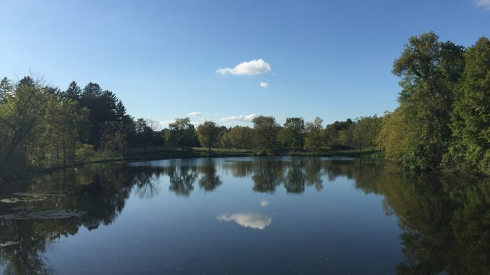 A beautiful lake in the fall season