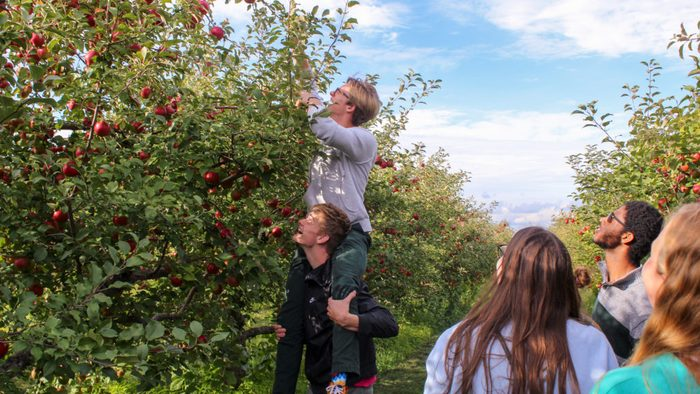 First Goodhue goes apple picking.