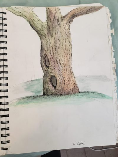 Field Drawing Assignment