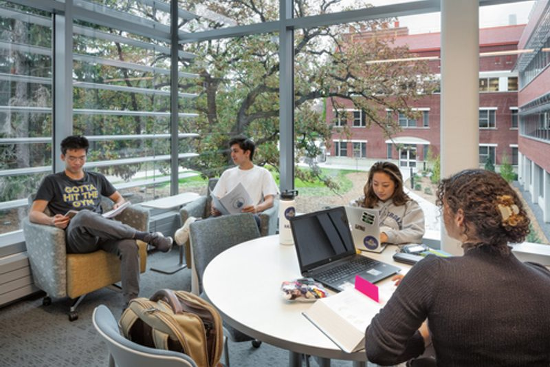 Students Studying in Lab in Anderson Lounge