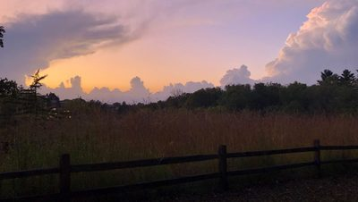 B(arb) sunset