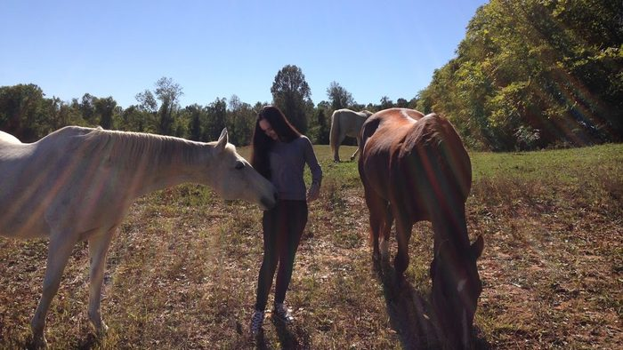 McKenna saying hello to some horses
