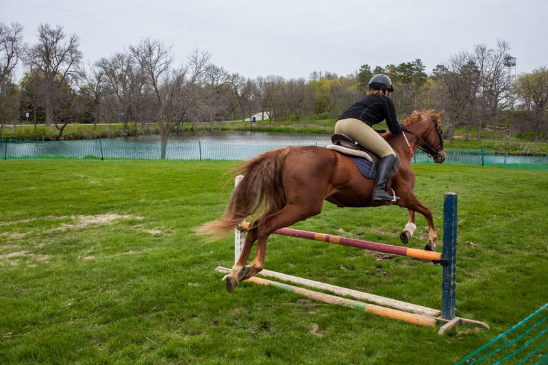 A horse and rider mid-air over a jump, as seen from behind