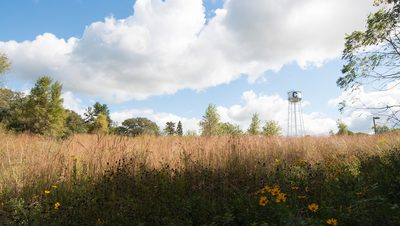 The water tower and the prairie part of the Arb