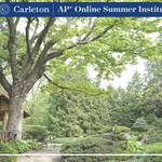 Japanese Garden APSI Zoom Background