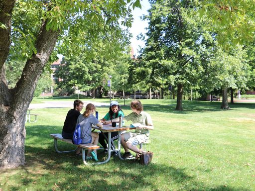 4 students sitting outside at a picnic table, working together. The table is on a grassy spot with multiples trees surrounding it.