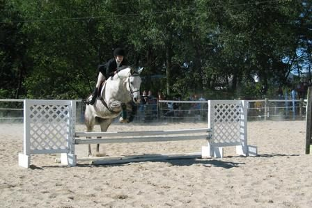 Equestrian jumping in competition