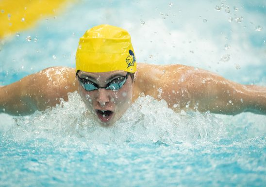 Competing swimmer in pool