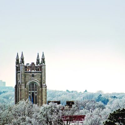 Skinner and Willis towers rising above frost-covered treetops