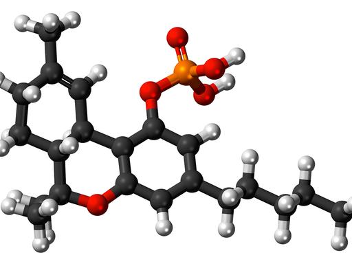Tetrahydrocannabinol (THC) molecule