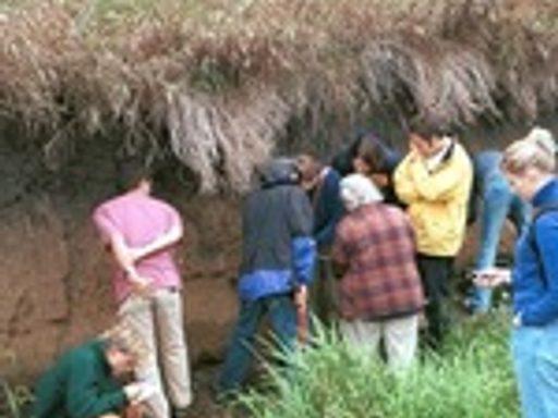 Students examine soil samples with professor Mary Savina.