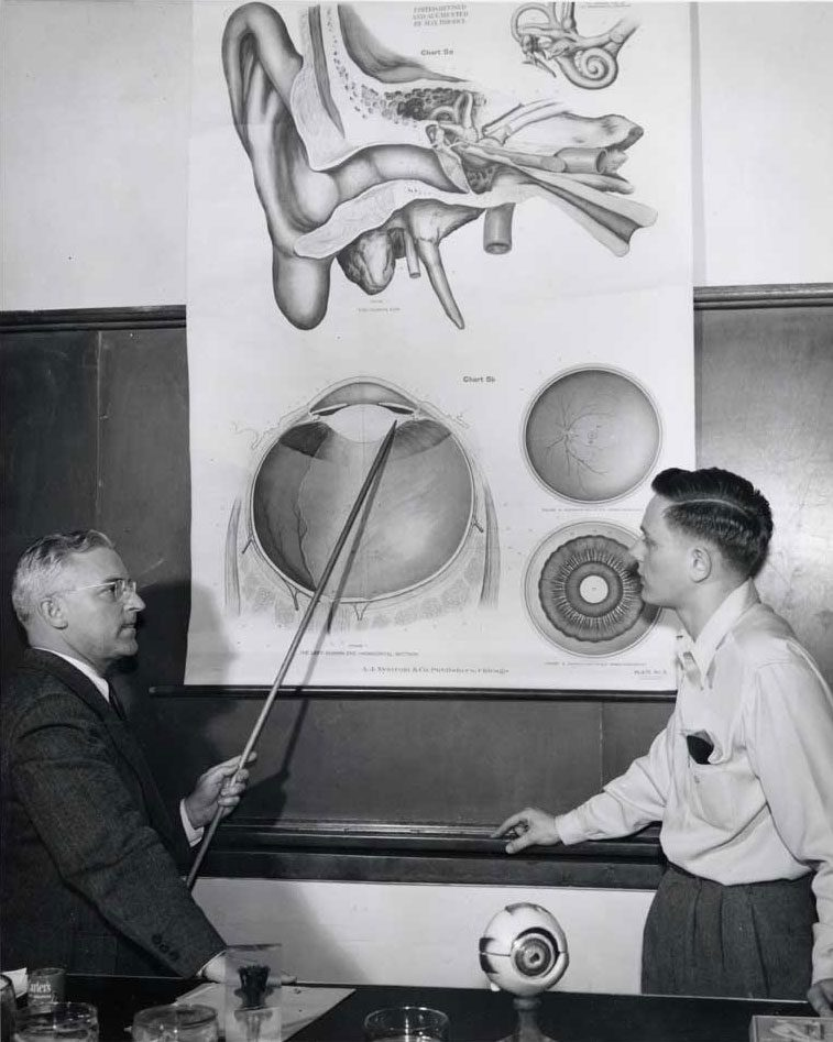 A wall chart in use