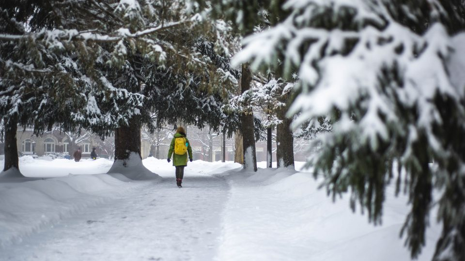 April Fool) Carleton College Announces Winter Free Academic