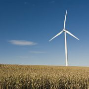 Carleton's Wind Turbine has run almost continuously since it was built four years ago.