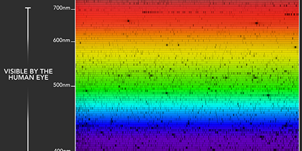 NEID's spectroscopic observations of the Sun