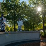 students dresses as cows dance on the Carleton sign to welcome new students to campus