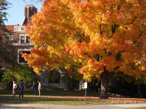 Fall at Carleton