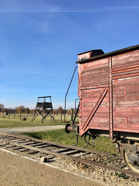 Railroad car on the tracks, watchtower in distance