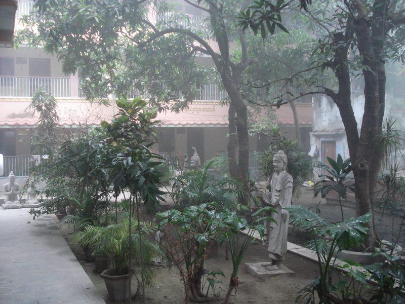 An empty, misty garden