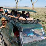 Students on safari