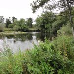 The River Nore, countryside near Kilkenny