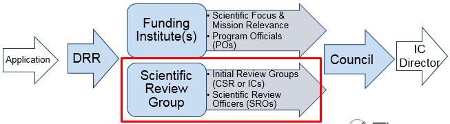NIH Review Process image