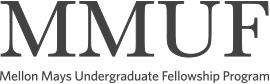 Mellon Mays Undergraduate Fellowship