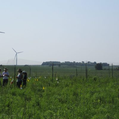 Students assist with data collection on the prairie for Professor Dan Hernandez's research.