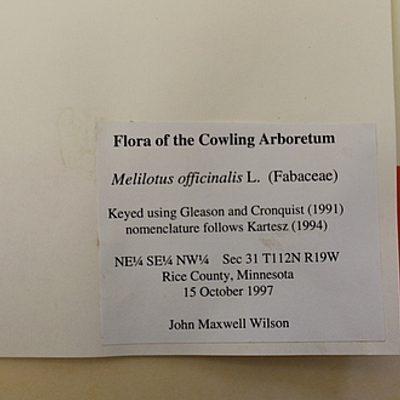 Close up of herbarium specimen label