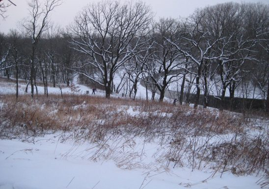 Skiers in the Lower Arb