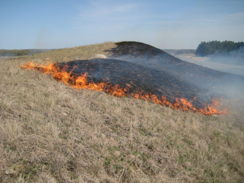 Prescribed burn at McKnight Prairie