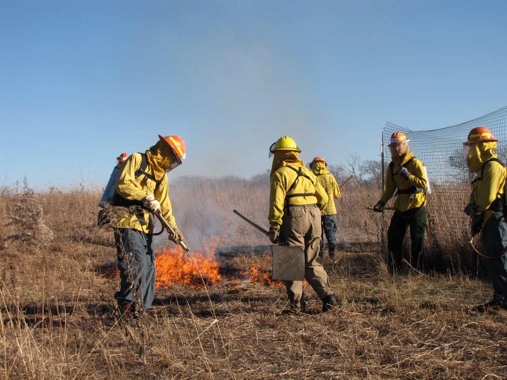 Workers burning the lower Arb in spring