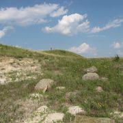 One of the hills of McKnight prairie in summer.