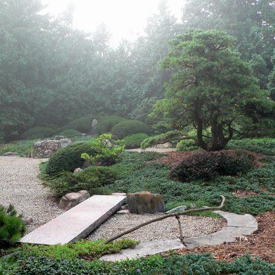 Japanese Garden in the Fog