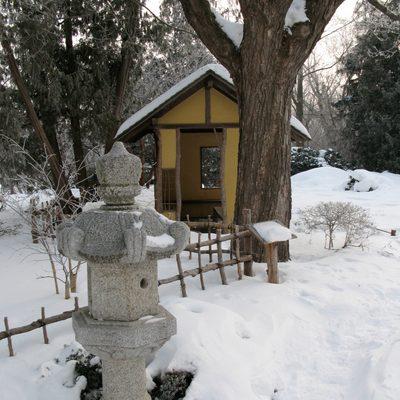 Japanese Garden in the Snow