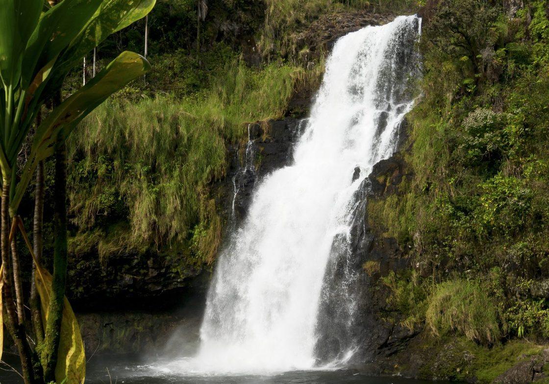 Kulaniapia Falls, Big island of Hawaiʻi, Hawaii.