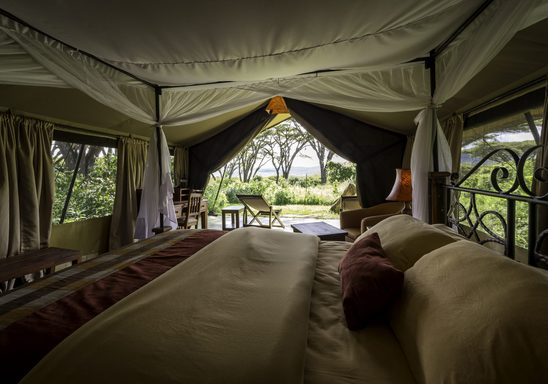 Lions Paw camp, tent interior.