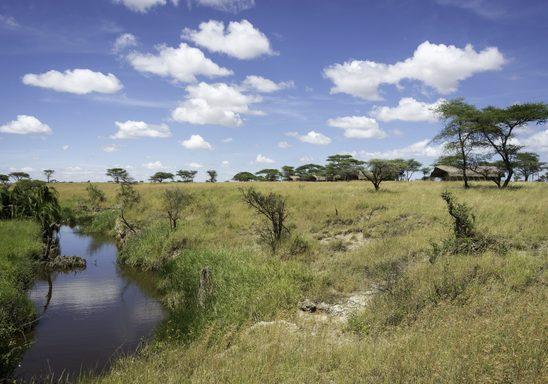 Sametu Camp and Nygarenyuki River.