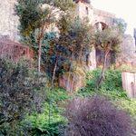 Old Roman Wall