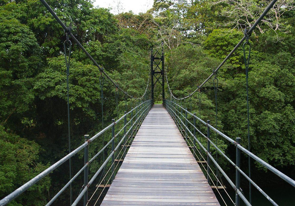 Monteverde Biological Reserve suspension bridge.