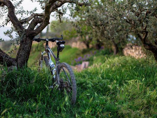Bike in Italy © Riccardo Chiarin