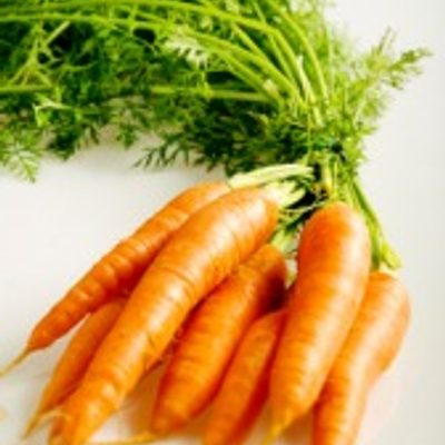 A bunch of fresh carrots
