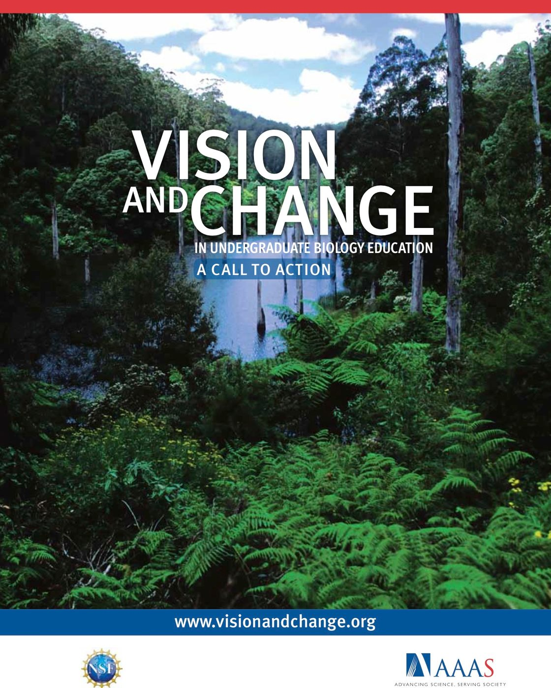Vision and Change