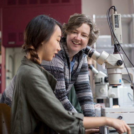 Professor Jennifer Wolff works with a student in a biology lab
