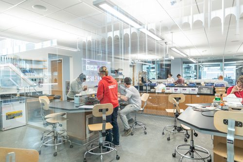 Students working in Anderson Hall lab