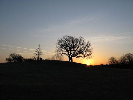 Sunrise at the Hill of Three Oaks