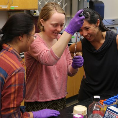 Viola Li '19, Elaina Thomas '18, and Rika Anderson '06 at work in a biology lab